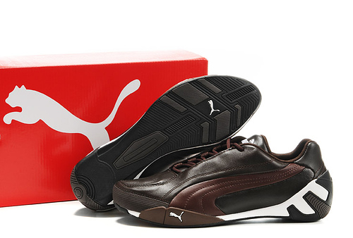 Puma Fluxion ii Shoe Brown/Chocolate